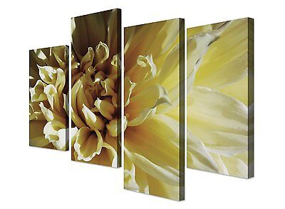 Large Cream Flower Picture Canvas Wall Art - Set of 4 Floral Prints RRP £29.99