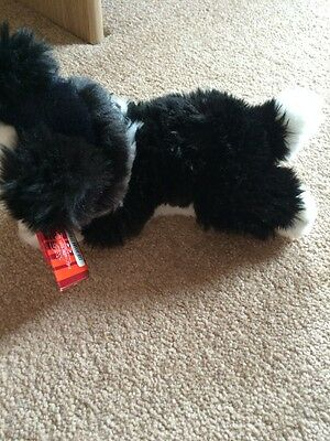 Keel Toys Border Collie Brand New With Tags