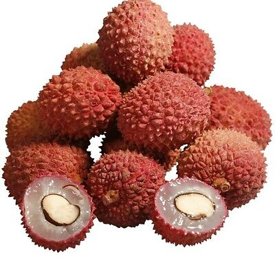 Sweet / Fresh Lychees Exotic Fruit 500g .P&P UK Stock Fast Delivery