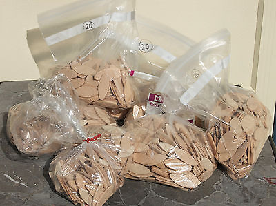 Lamello #10 & # 20 Wood Joiner Biscuit Lot 100s Almost 9lbs