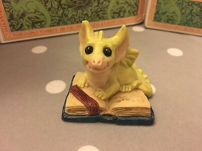 Pocket dragons By Real Musgrove - A Book My Size