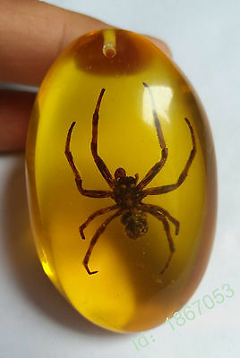Amber insect pearl pendant Beeswax real insects, spiders the pendant