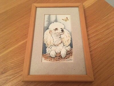 Cash's Woven Silk Picture Poodle Puppy in Excellent Condition