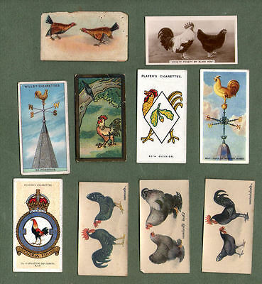 Poultry chickens cockerels hens poulet old cigarette card collection #159