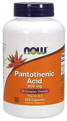 Now Foods, B5 Pantothenic Acid, 500mg, 250 Kaps.