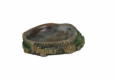 Mini Terrarium Rainforest Rock Bowl for Crickets Spiders Insect Water Gel 6cm