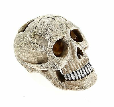 Mini Human Skull Aquarium Fish Cave Ornament Fish Tank Decoration