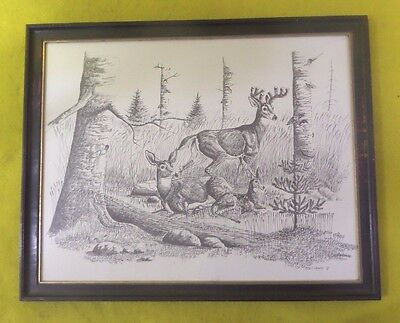 "1973 Original Eddy Cobiness Pen Ink Drawing Framed Signed Dated ""free Shipping"""