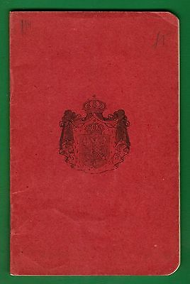 Kingdom Of Yugoslavia Old Passport 1928