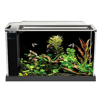 Fluval Spec 19L Desktop Glass Aquarium – Black