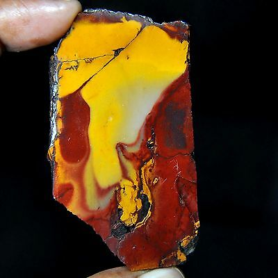 332.30 Cts Designer old stock mookaite jasper Rough Selected  Cutting Slice-X3