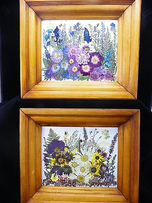 Pressed Flower Pictures #4 ~ Summer Garden I and II ~ Pair Antique Wooden Frames