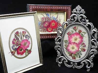 Pressed Flower Pictures #7 ~ Roses ~ Photo Frames