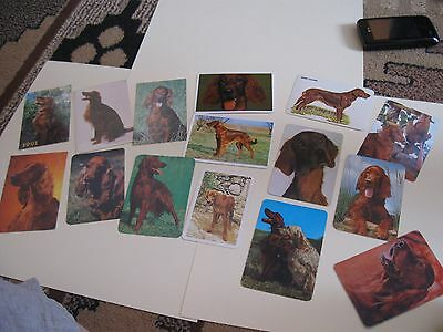 15 pocket calendars Irish Setters from different years/countries