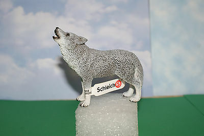 Male Coyote by Schleich Wildlife Series Figure 2009 New with Tag