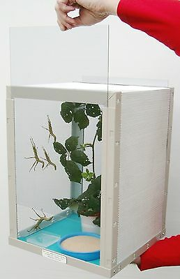 MIC stick insect cage - for housing stick insects, plus ten blue cage Liners