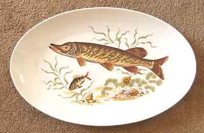 Naaman Oval Pike Fish Plate