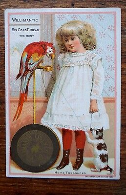 Willimantic Six Cord Thread Spool Cotton HOME Treasures Cat Parrot Trade Card