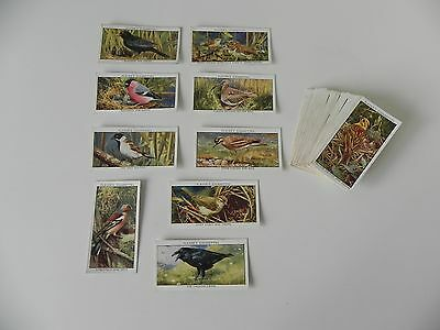 Full set of Players WILD BIRDS cigarette cards