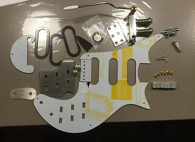 Brian may R S tremolo /bridge /fasteners / and complete pick guard assembly!