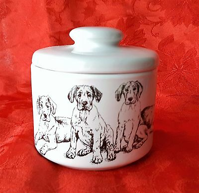 GREAT DANE Puppies Porcelain Jar Treat Bowl Gift Dog Lover by Cindy Farmer
