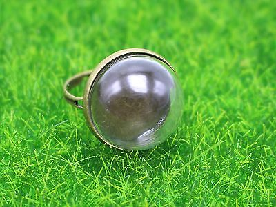 2 Bronze Adjustable Ring with 18mm Clear Glass Dome Terrarium 1/2 Globe Bottle