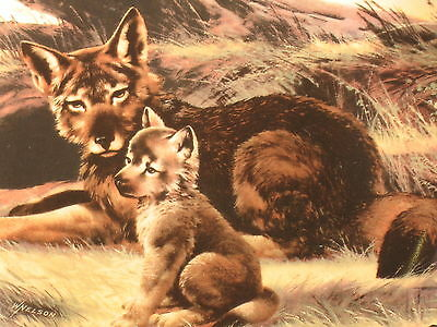 Vintage Red Wolf Collector Plate Will Nelson - W.S. George - Endangered Species