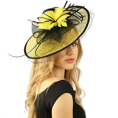Oval Sinamay Feathers Floral Net Fascinators Millinery Cocktail Derby Hat