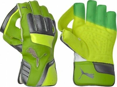 2017 Puma evoPOWER 2 Wicket Keeping Gloves Size Youths