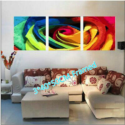 Framed Set of Three 40*50cm Painting by Number Kit Flower S5 F3P026