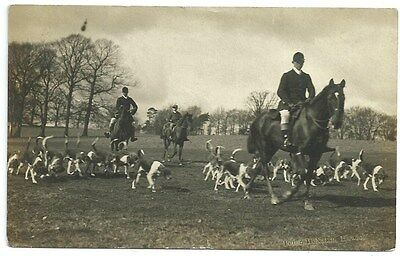 Vintage Postcard. Duke of Buccleuch's Fox Hounds. Used 1912. Ref:72418