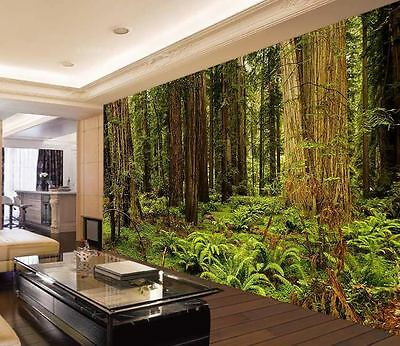 Redwood National Park Full Wall Mural Photo Wallpaper Print Kids Home 3D Decal