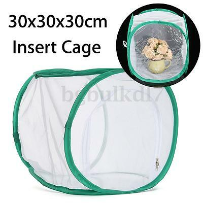"""12"""" x12""""x12""""in White Mesh Enclosure Butterfly Praying Mantis Insect Hanging Cage"""