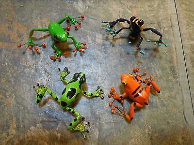 Rainforest Frog -Tree Frog- Fridge Magnets Set of 4 Colorful Lifelike Frogs