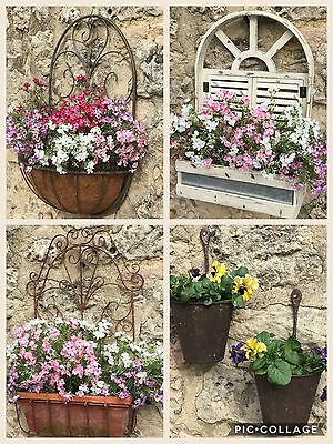 Antique Chic Style Wall Plant Pot Containers Window Box Shabby Vintage Cottage