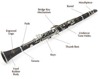 Suzuki Master Class Key of Bb Clarinet. Quality Clarinet Outfit. 2 year warranty