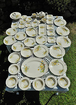 Royal Doulton Somerset D6029 1939 Part Dinner & Tea Set ,Teapot, jug, plates,etc