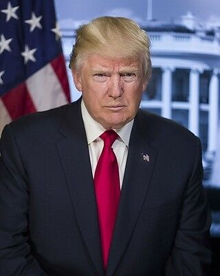 "Official White House Portrait of President Donald J Trump 8""x 10"" Photo"