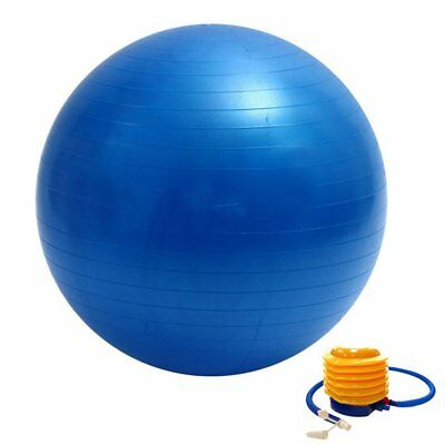Exercise Gym Ball Swiss Pilates Yoga Core Training Stability Ball Blue 65CM Pump