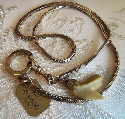 Victorian 12 K Gold Filled Watch Chain Large Ring 2 Fobs genuine shark tooth