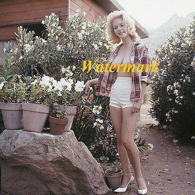 Gloria Knight 1950-60's Classic, Retro, Vintage, Timeless Pinup Models-Photo D-2