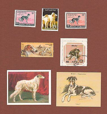 Borzoi dog postage stamps and cards, set of 7
