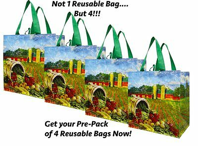 Earthwise Reusable Shopping Grocery Tote Bag 4 Pack