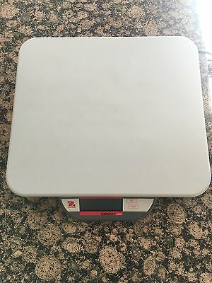 Ohaus Bench Scale