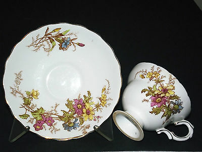 Rosina  Cup And Saucer Bone China Made In  England #4867