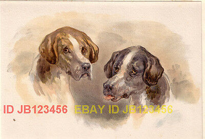 DOG English Pointer Pair, Quality Antique 1880s Print