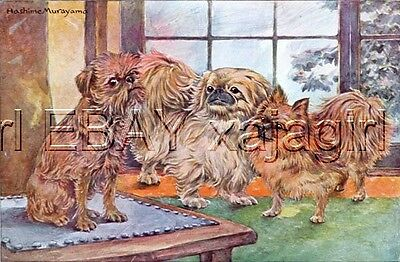 DOG Pekingese & Friends! 75+ Year Old Antique Print