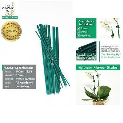 "30cm (12"") Flower Stakes 