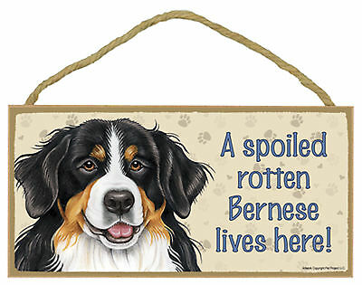 A spoiled rotten Bernese lives here! Wood Mountain Dog Sign Plaque Made in USA