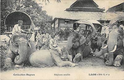 Cpa Asie Laos Elephants Couches